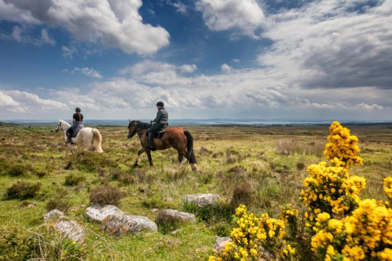 Daly's House B&B Doolin co. Clare - Accommodation B&B on Ireland's Wild Atlantic Way - Horse riding